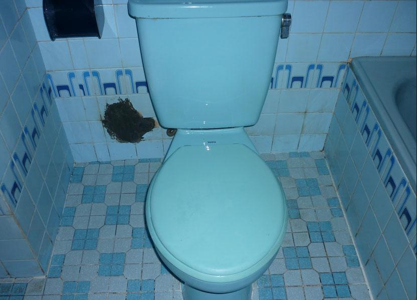 keramik wc berkerak